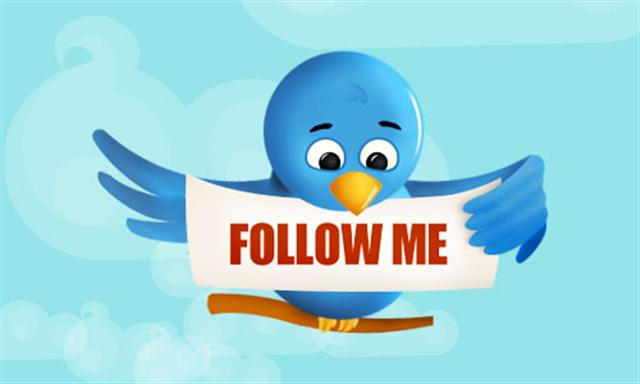 twitter_bird_follow_me__Small__bigger
